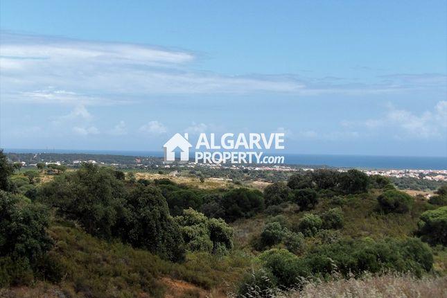Tavira, Tavira (Santa Maria E Santiago), Tavira Algarve