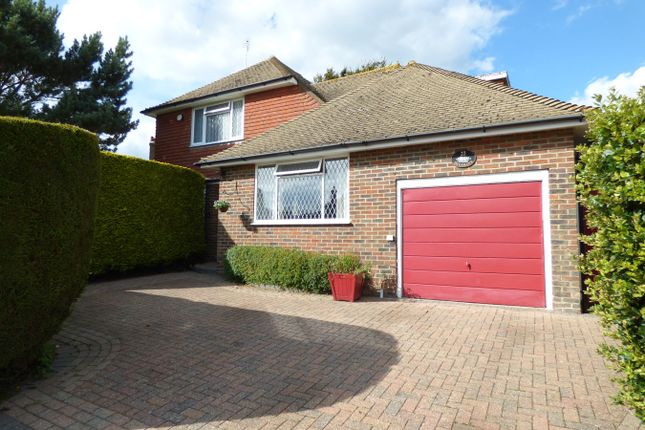 Thumbnail Detached house for sale in Pinewoods, Bexhill-On-Sea