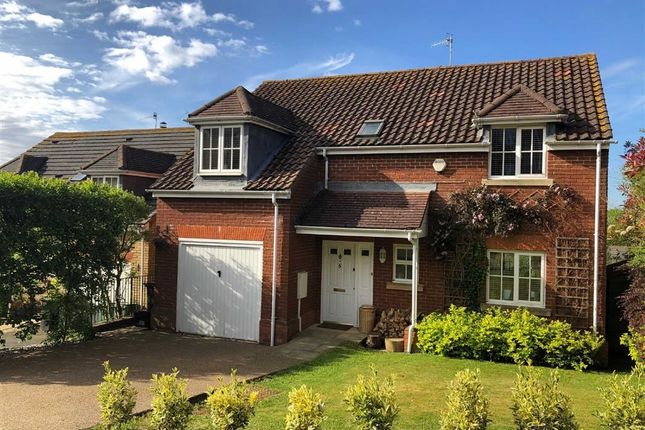 Thumbnail Detached house for sale in Coxheath Close, St Leonards-On-Sea, East Sussex