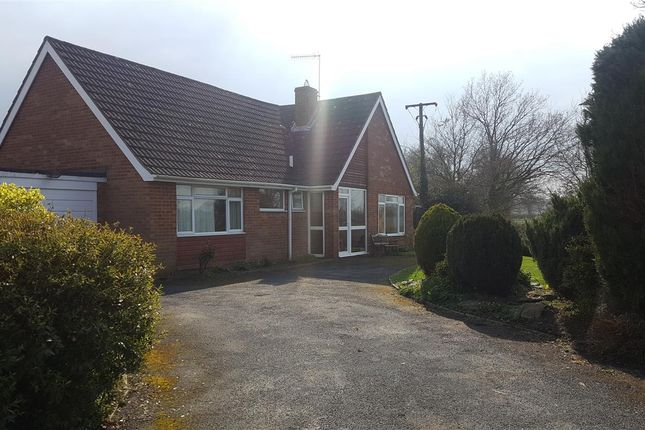 Thumbnail Bungalow to rent in Burnell Close, Bidford-On-Avon, Alcester