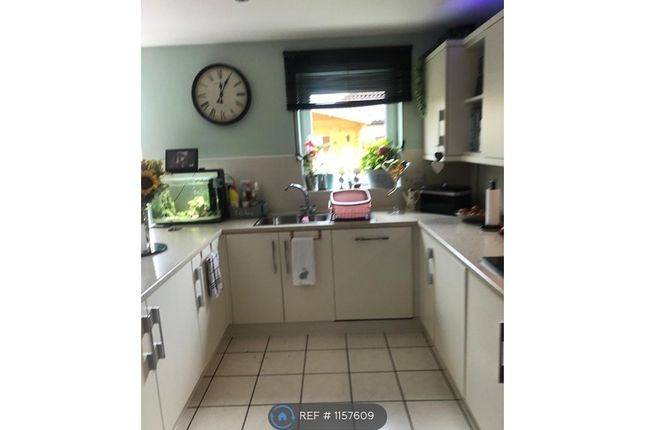 Thumbnail Terraced house to rent in Holly Blue Close, Little Paxton, St. Neots