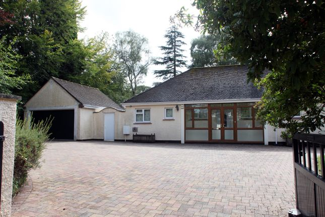 Thumbnail Bungalow to rent in Down Road, Tavistock
