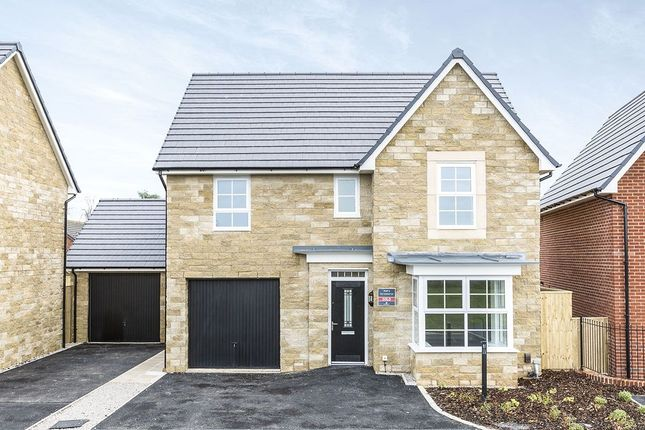 Thumbnail Detached house to rent in Mather Avenue, Garstang