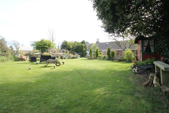 Thumbnail Detached bungalow for sale in Arundel Road, Castle Goring, Worthing