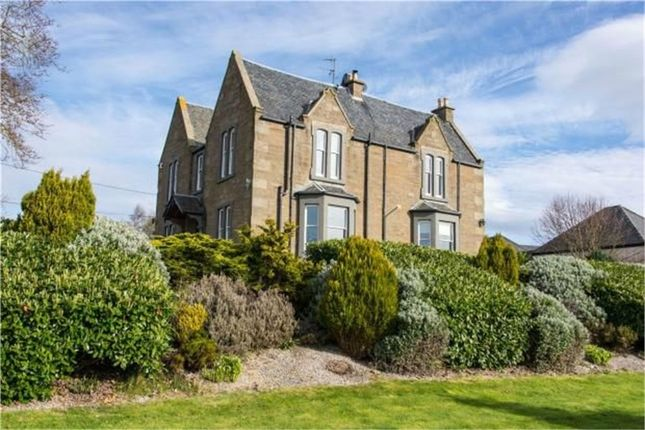 Thumbnail Detached house for sale in Panbride, Panbride, Carnoustie, Angus