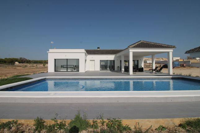Thumbnail Villa for sale in El Molar, Elche, Alicante, Valencia, Spain