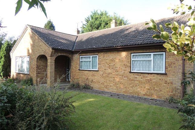 Thumbnail Detached bungalow for sale in Scotts Lane, Brookville, Thetford