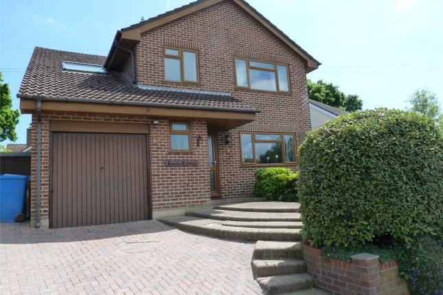 Thumbnail Detached house for sale in Stephen Langton Drive, Bournemouth, Dorset