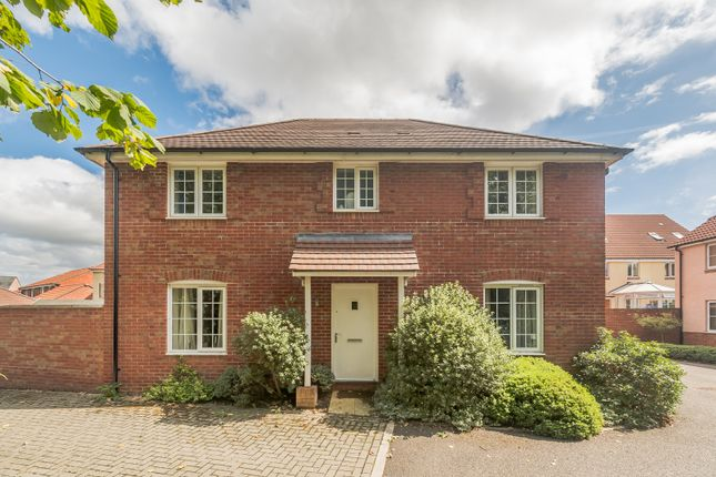 Thumbnail Detached house for sale in Alma Villa Rise, Cranbrook Exeter