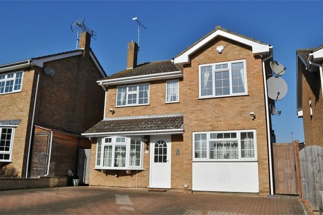 Thumbnail Detached house for sale in Petersfield, Chelmsford, Essex