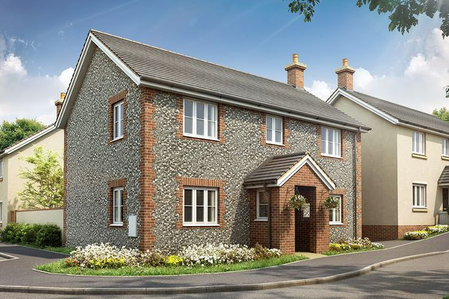Thumbnail Detached house for sale in Honiton Road, Churchinford