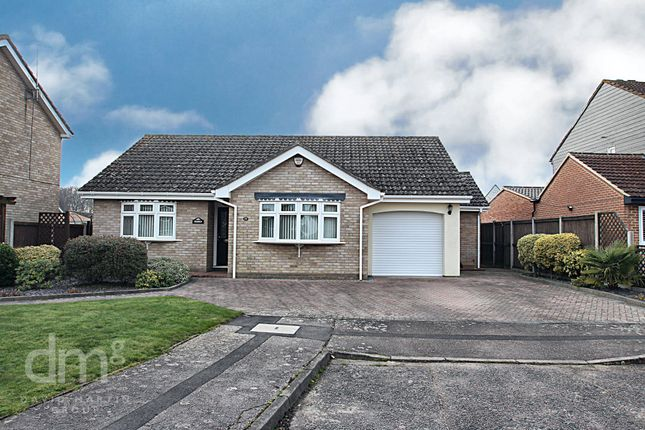 Thumbnail Detached bungalow for sale in Searle Way, Eight Ash Green, Colchester
