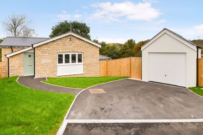 Thumbnail Detached bungalow for sale in Daffodil, Beautiful Detached Bungalow, Miles Gardens, Upwey