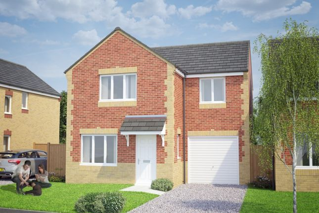 Thumbnail Detached house for sale in The Kildare, Fabian Road, Eston, Cleveland