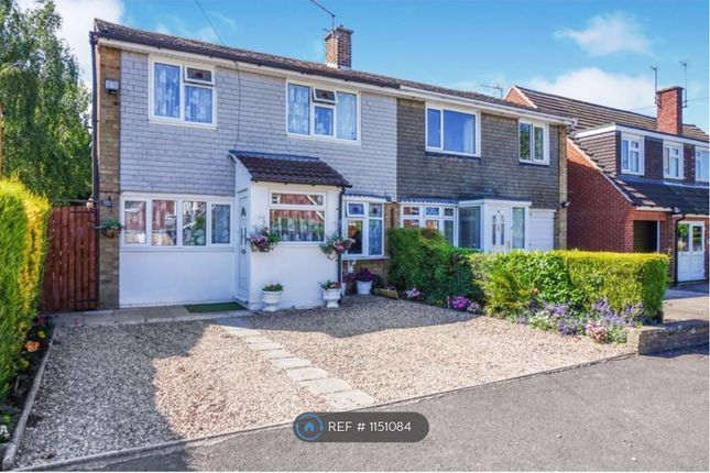3 bed semi-detached house to rent in Priory Walk, Leicester Forest East, Leicester LE3