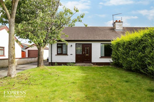 Thumbnail Semi-detached bungalow for sale in Grahamville Estate, Kilkeel, Newry, County Down