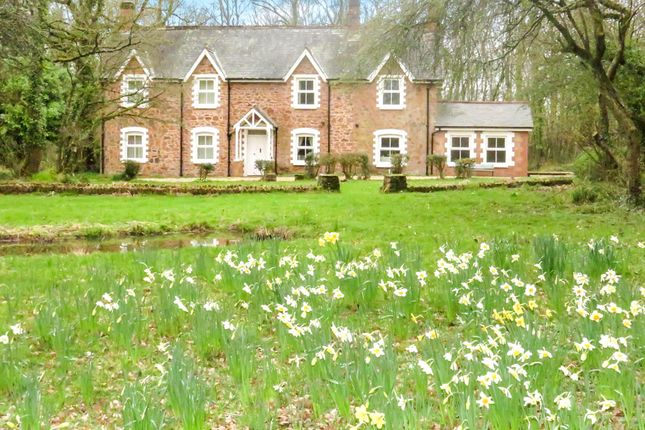 Thumbnail Detached house for sale in Spring Grove, Milverton, Taunton