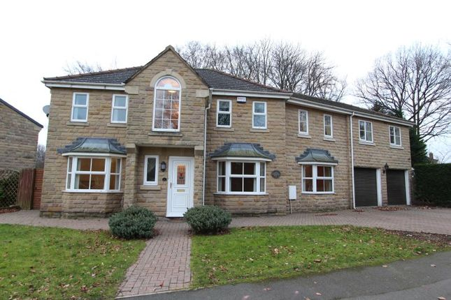 Thumbnail Detached house for sale in Oakfield Avenue, Chesterfield