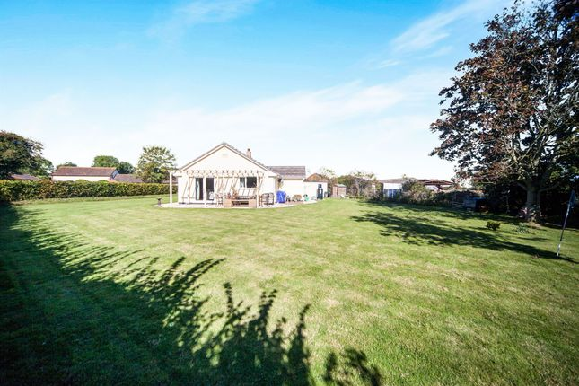 Thumbnail Detached bungalow for sale in Hedging, North Newton, Bridgwater