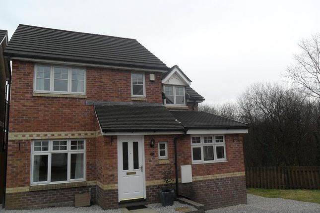 Thumbnail Detached house to rent in Heol Y Celyn, Llansamlet, Swansea.
