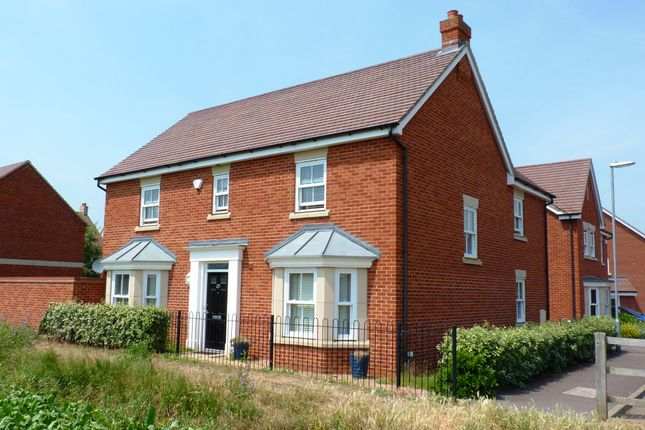 Thumbnail Detached house for sale in Exmoor Avenue, Biggleswade