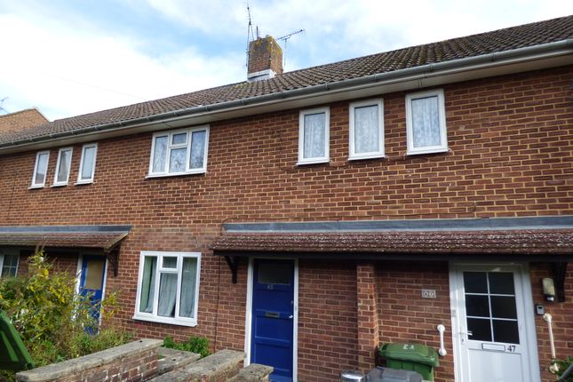 Thumbnail Flat to rent in Wolfe Close, Winchester