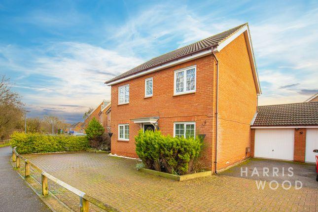 Thumbnail 4 bed detached house to rent in Samian Close, Heybridge, Maldon