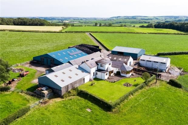 Thumbnail Equestrian property for sale in East Mosside Farm, Hurlford, Kilmarnock, East Ayrshire