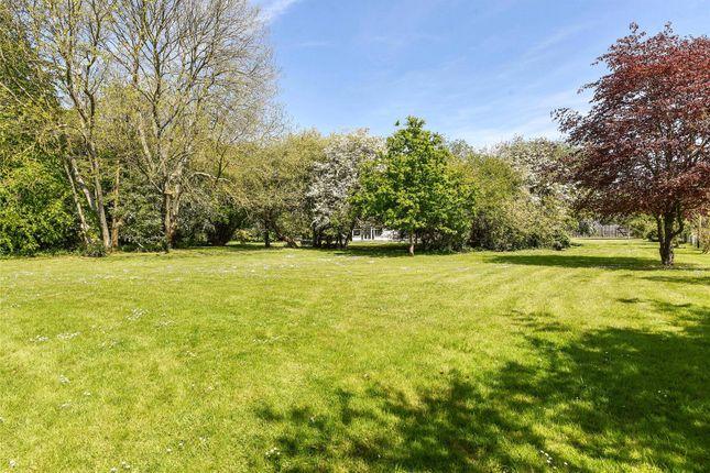 Garden of Sefton Lane, Warningcamp, Arundel, West Sussex BN18