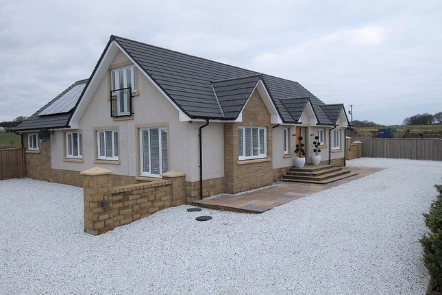Thumbnail Detached house for sale in Westbank Holdings, Ravenstruther