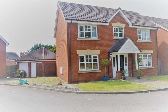 Thumbnail Detached house to rent in Hoveton Way, Chigwell, Ilford