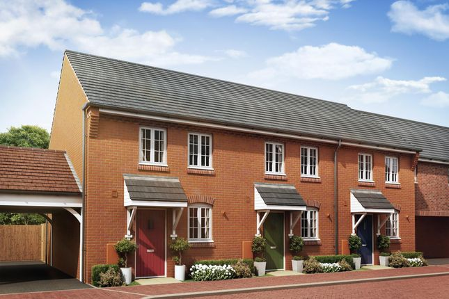 "Thumbnail Terraced house for sale in ""Winton"" at Ripley Link, Great Denham, Bedford"