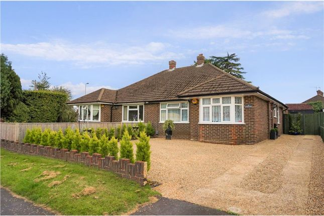 Thumbnail Semi-detached bungalow for sale in Poundfield Gardens, Woking