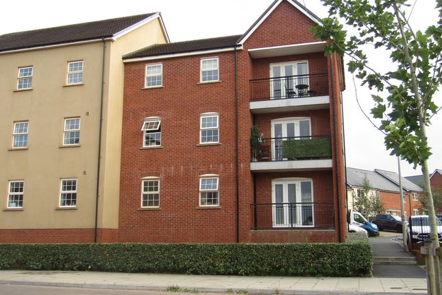 Thumbnail Flat to rent in Harris Place, Exeter