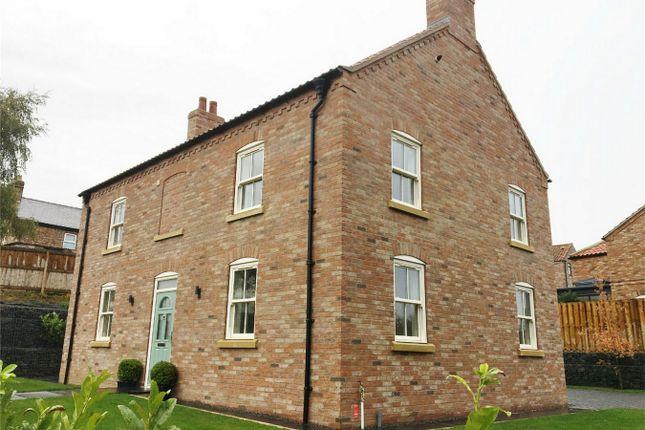 Thumbnail Detached house to rent in Back Lane, Raskelf, York
