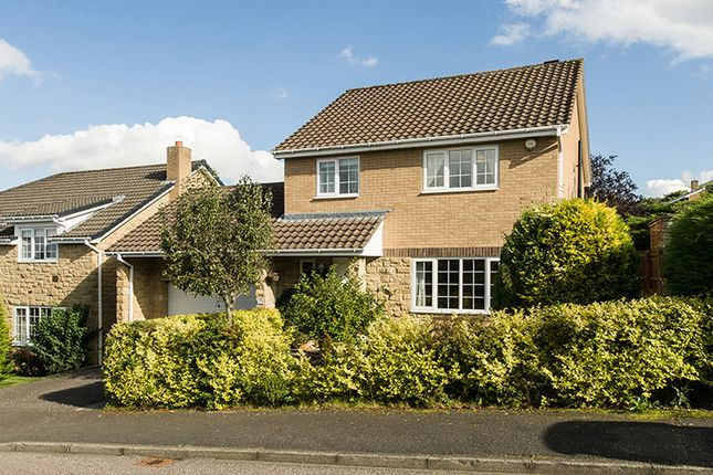 Thumbnail Detached house to rent in 21 Collingwood Drive, Hexham, Northumberland