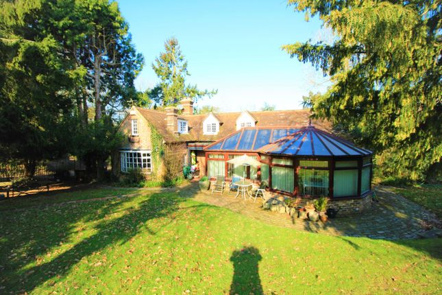 Thumbnail Detached house for sale in Watermill Lane, Bexhill-On-Sea