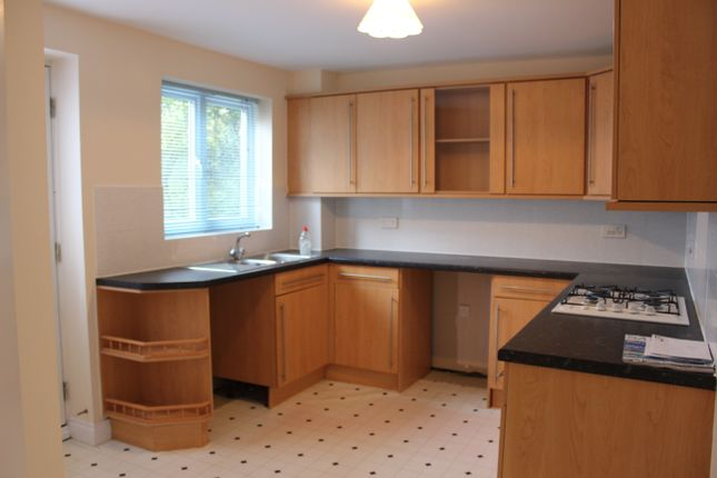 Thumbnail Semi-detached house to rent in Hakewill Way, Colchester