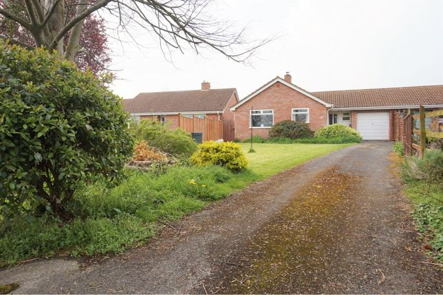 Thumbnail Detached bungalow for sale in Huntham Close, Taunton