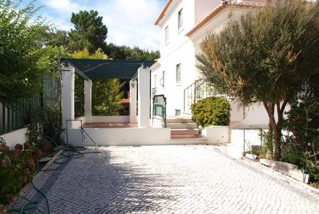 Thumbnail Property for sale in Costa De Prata, Caldas Da Rainha, Leiria, Portugal