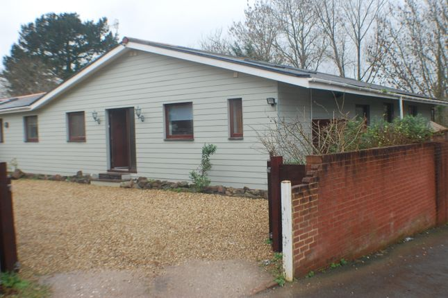 Thumbnail Semi-detached house to rent in Danes Road, Exeter, Devon