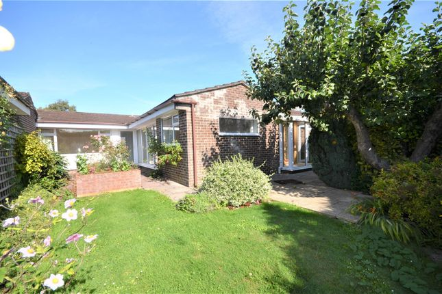Thumbnail Semi-detached bungalow for sale in Millbrook Court, Child Okeford, Blandford Forum