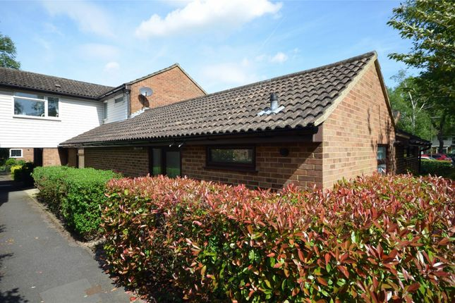 Thumbnail Terraced bungalow for sale in Cypress Grove, Ash Vale, Surrey