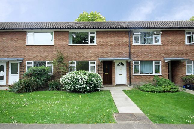 2 bed flat to rent in Munster Road, Teddington