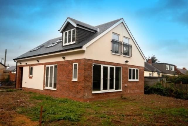 Thumbnail Bungalow for sale in Pine Avenue, Fawdon, Newcastle Upon Tyne