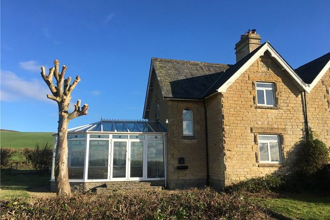Thumbnail Semi-detached house to rent in Kings Mill Cottage, Common Lane, Marnhull, Sturminster Newton