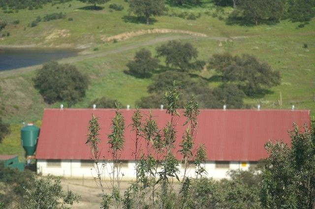 Breeding Facilities
