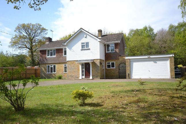 Thumbnail Detached house to rent in The Ridge, Little Baddow, Little Baddow