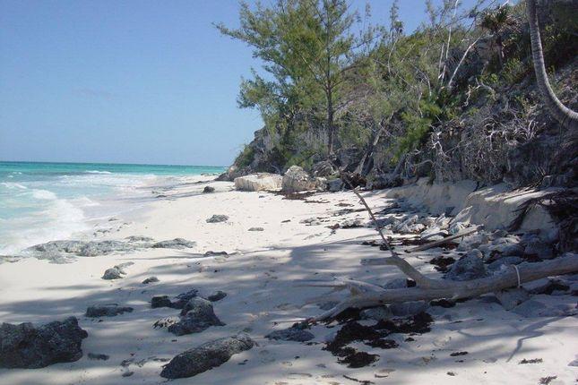 Banks Road, Eleuthera, The Bahamas
