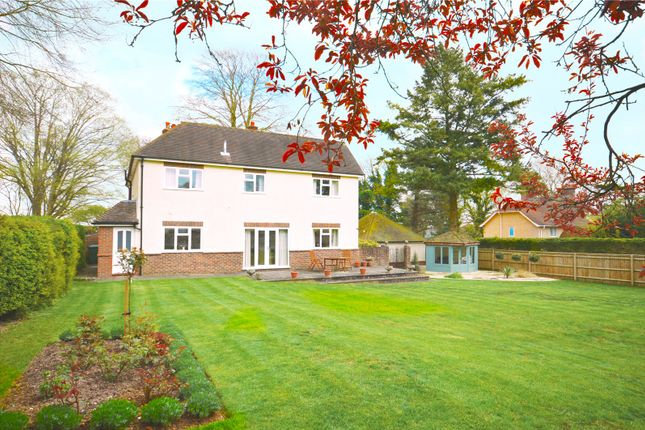 Thumbnail Detached house for sale in Andover Road, Winchester, Hampshire
